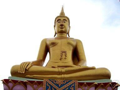 BudhaSuite